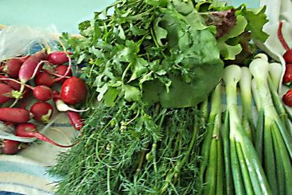 салаты с зеленью и овощами прекрасное дополнение к любым блюдам, отличный вариант пополнения организма витаминами и клетчаткой