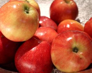 Салаты с яблоками - полезные и вкусные, просто готовить, содержат витамины и клетчатку