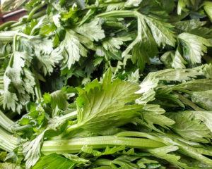 сельдерей - полезное растение, применяется в кулинарии и народной медицине
